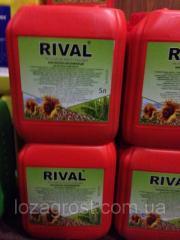 Стимулятор роста РИВАЛ