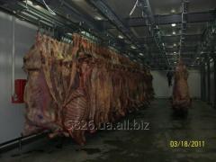 Линии технологические для мясокомбинатов:
