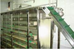 Many-tier conveyor cooling system