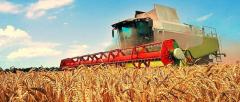 Database of the agricultural enterprises of