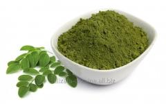 Pulbere Matcha (ceaiul verde)