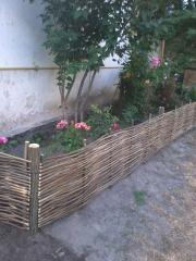 Fences lawn of a rod and a hazel grove