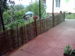 Fences from a hazel grove (Tyn)