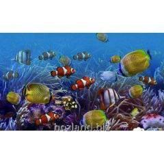 Клеенка настольная пластик 58х97мм, толщ 0.17мм Водный мир НТМ