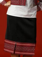 Skirts classical the Embroidered skirt -