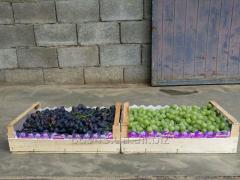 Ящики для винограда шпоновые