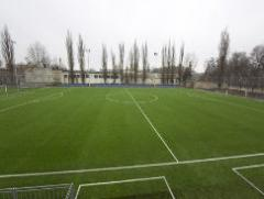 Coverings for sports grounds