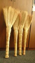 Broom of a sorghum of 2014 harves