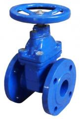 Cast iron gate valve with rubberized wedge 30h39r