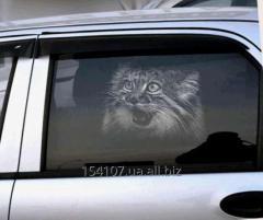 Гравюры на автомобильном стекле