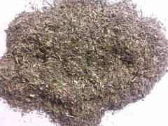 Basil (chopped Greens)