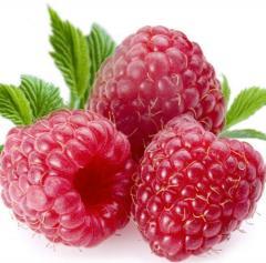 Raspberry Diamond remontantny saplings wholesale