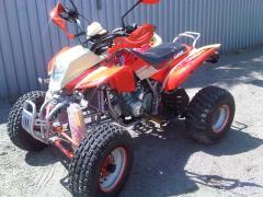 Bashan BS250S-11B ATV