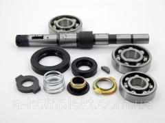 Repair Kit water pump and-41; A-01 old model...
