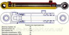 Гидроцилиндр ГЦ-50.25.160.0.25.00