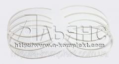 Кольцо уплотнительное защитное под гильзу двигателя ЯМЗ (фторопласт)