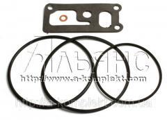 Набор центробежного масляного фильтра ЗИЛ (арт.2501)