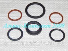 Ремкомплект гидроцилиндра пресс-подборщика прицепного ПС-1,6/ПСБ-1,6Г (арт. 1231)