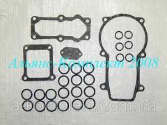 Набор для ремонта ТНВД+прокладки Д-245, Д-260 (Motorpal) (арт. 13881)