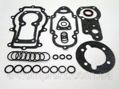 Набор для ремонта ТНВД+прокладки Д-245 (363.1111-03) (арт. 1388)