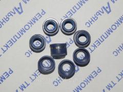 Комплект манжет клапанов КАМАЗ (740-1007262)