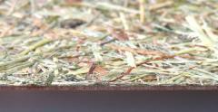 Панель для обшивки сауны с натуральным...