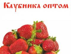 Strawberry wholesale for a freezing. Products and