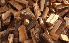 Купим дрова свежеколотые и камерной сушки