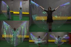 Wings from organza and a kristallon