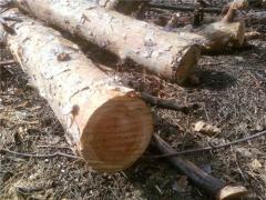 Сухие дрова, распил дров, Симферополь