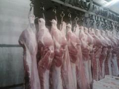 Полутуши свиные обрезные