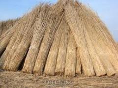 Крыша камышовая