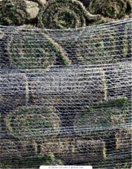 Натуральні рулонні газони купити