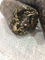 Обелки от слънчоглед