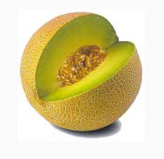 Fragrance liquid Melon.