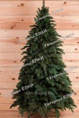 Fir-tree cast Lapland of green 1,5 m, wholesale