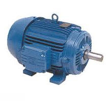 Asynchronous electric motors