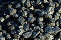 Антрацит уголь купить