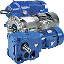 Reducers of NORD and NORD motor reducers