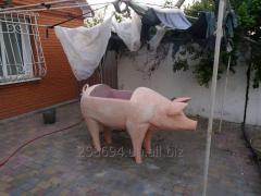 Мангал, мангал-свинья