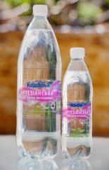 Артезианская вода негазированная 1.5л, 0.5л