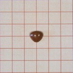 Нос на ножке №1A, коричневый треугольный 10*10мм, 1тыс.шт.