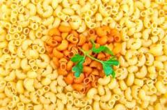 Pasta: Shell macaroni products