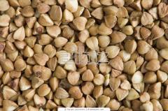 Крупа гречневая пропаренная ядрица (buckwheat