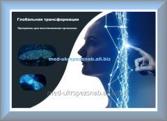 Программа для восстановления организма