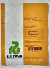 Семена капусты Джинтама F1 2500 ( калибр )