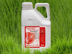 Disinfectants seeds