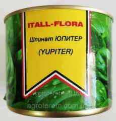 Шпинат ЮПИТЕР (YUPITER) 250г