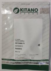 Петуния Пандора блу айс Petunia F1 (Petunia grandiflora) 500с