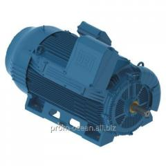 High-voltage engine W50 315H/G 150 kW 1500 rpm.